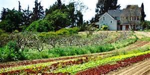 Fairview Gardens, Santa Barbara, California
