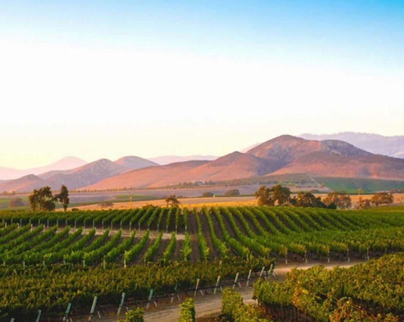 Santa Barbara County Wine Country